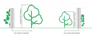 Distances végétation et clôture mitoyenne