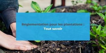 Réglementation pour les plantations